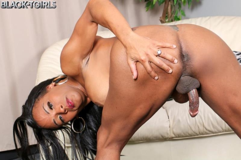 Black tgirls getting fucked
